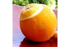 Les Givrées Orange